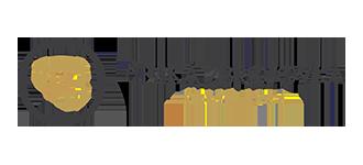 Ceska zbrojovka Logo